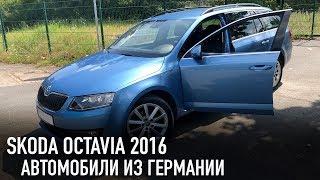 Skoda Octavia // Автомобили из Германии