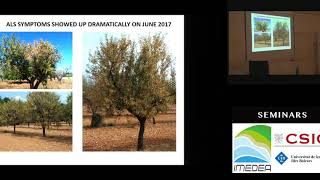Reconstruction of the first outbreak of Xylella fastidiosa in Europe