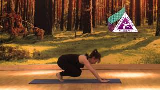Yoga - Adho Mukha Vrksasana (Handstand Pose)