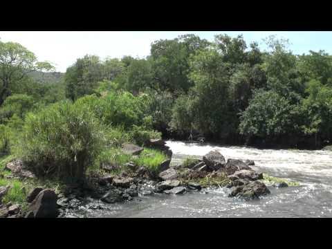 2014 Nimule Nationalpark
