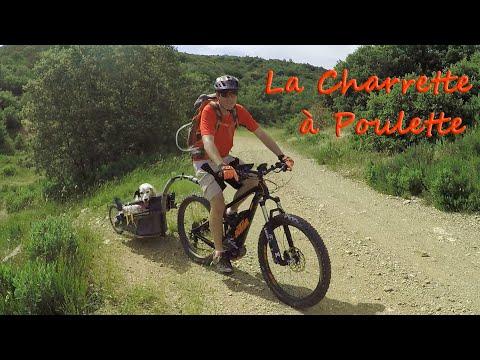 La Charrette à Poulette - VTTAE KTM MACINA KAPOHO - SLICK gimbal + GOPRO +  BOB Ibex