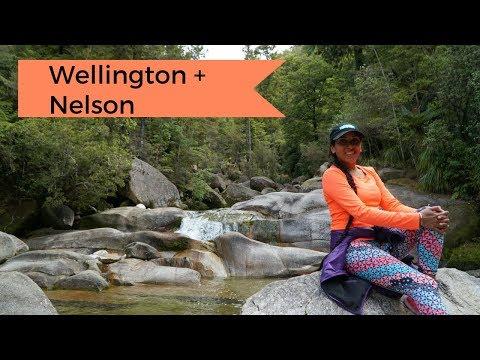 Wellington + Nelson | Travel Vlog