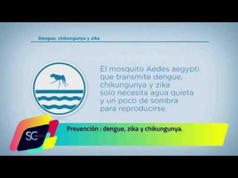 Prevención Dengue, Zika y Chikungunya