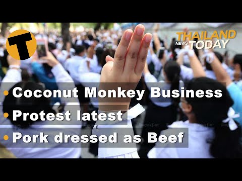 Thailand News Today | Coconut Business, Weekend protests, Pork dressed as Beef | November 13