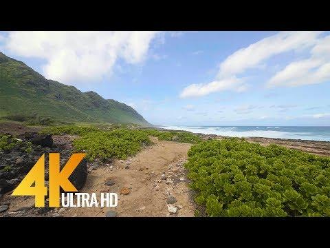 4K Virtual Walk with Ocean Views & Nature Sounds | Kaena Point Trail, Oahu, Hawaii - 1 Hour