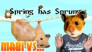 Mabi Vs Spring Has Sprung (Devious Hamsters!)