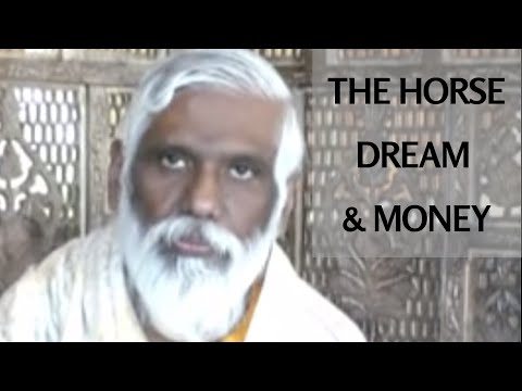 The Horse Dream And Money