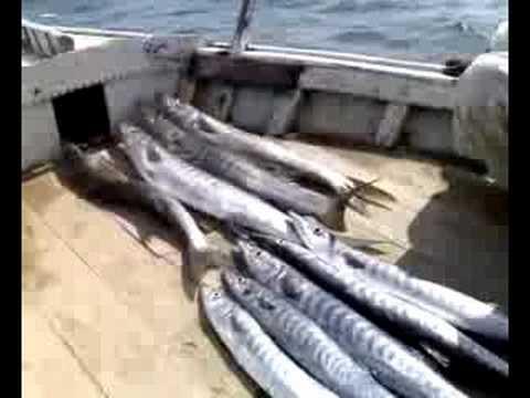 Fishing Charna Karachi VII