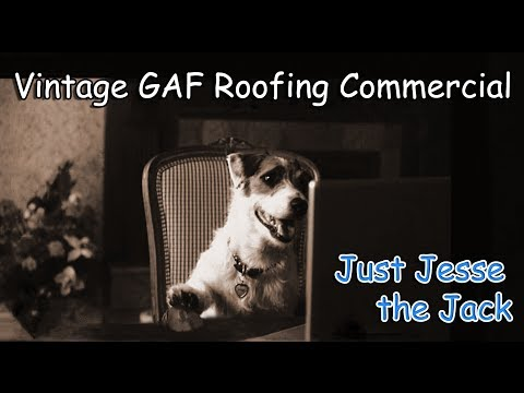 Dog prepares house for storm GAF Roofing Commercial