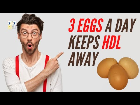 Eat 3 Eggs A Day And Stay Healthy | Eating Eggs Everyday Lose Weight