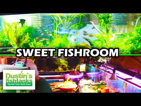 Fish room of a legend larry brown 39 s house my favorite for Dustins fish tanks
