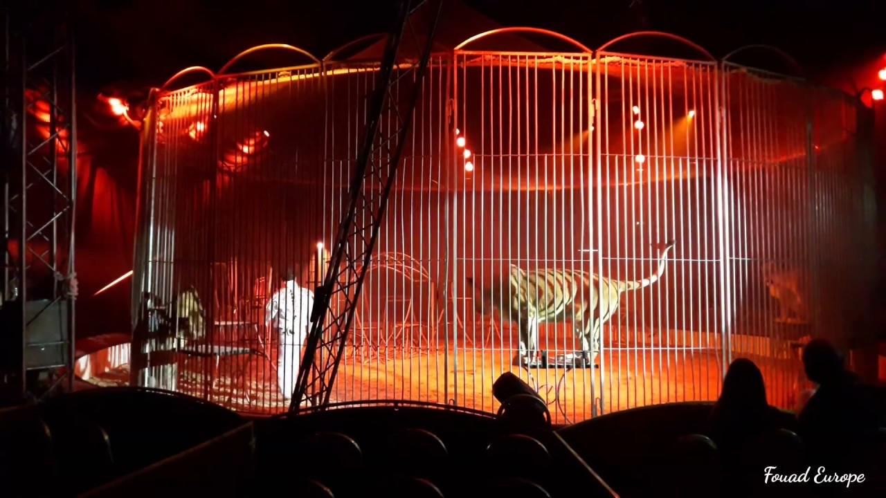 cirque a la vigie strasbourg 02 04 2017 youtube. Black Bedroom Furniture Sets. Home Design Ideas