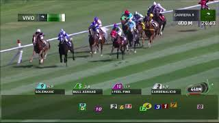 Vidéo de la course PMU PREMIO ONLY ALONE