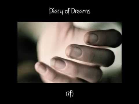 Diary of dreams -  Wahnsinn