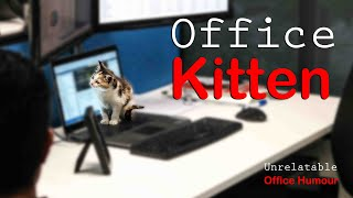 Kitten - Unrelatable Office Humour ep2