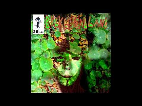 Buckethead - Pike 38 - It Smells Like Frogs - Full Album