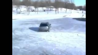 2 dogs drifting in snow