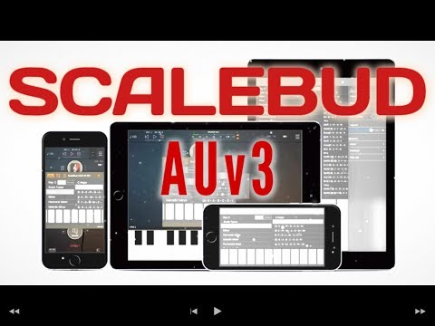 ScaleBud AUv3 Midi app for iPad The Auv3 Show