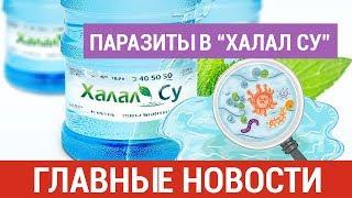 Новости Казахстана. Выпуск от 28.02.19