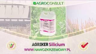 Nawóz z krzemem - Agriker Silicium - płynny nawóz krzemowy
