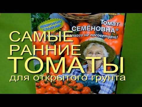 САМЫЕ РАННИЕ ТОМАТЫ для ОТКРЫТОГО ГРУНТА. Советы от ЗЕЛЕНОГО ОГОРОДА.   выращивание   помидоры   парничок   открытый   томатов   теплица   рассада   томаты   посева   огород