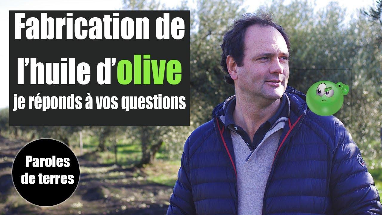 Comment se fabrique l'huile d'olive ? Paroles de Terres - Saison 3