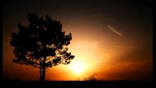 Kate Wax - Holy Beast (Hidden Choice Edit)