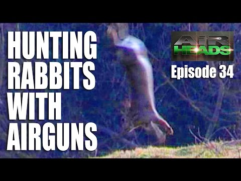 Hunting Rabbits With Airguns - AirHeads Episode 34