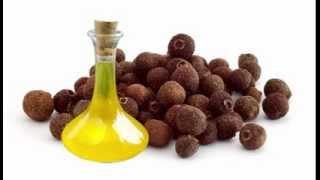 Allspice Oil Health Benefits