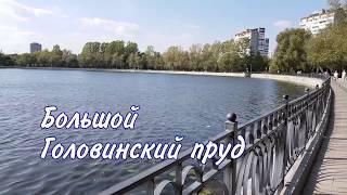 Большой Головинский пруд. Осень 2018