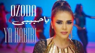 عمرو المصري يكشف كواليس تعاونه مع المطربة التركية 'أزادا'.. فيديو