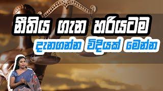 නීතිය ගැන හරියටම දැනගන්න විදියක් මෙන්න | Piyum Vila | 11 - 08 -2020 | Siyatha TV Thumbnail