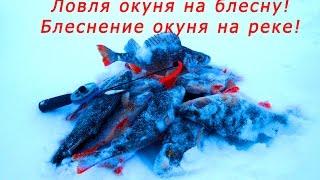 Ловля окуня, видео. Рыбалка на окуня зимой на Чебоксарском вдхр река Волга. Зимнее блеснение окуня.