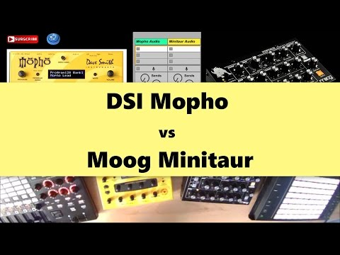 Moog Minitaur vs DSI Mopho in Techno Basslines Tutorial (2017)