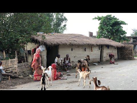 Village Life In