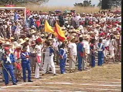 Programa Especial sobre La Batalla de Araure estado Portuguesa