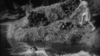 Tarzan Vs. Jane (Johnny Weissmüller Vs. Maureen O'Sullivan)