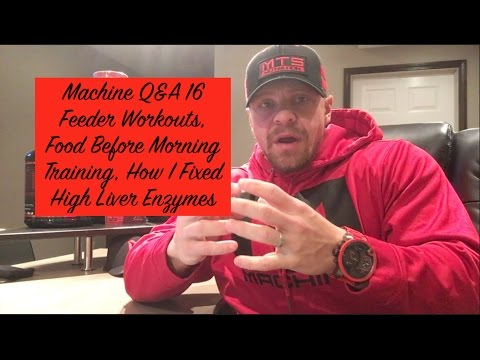 Machine Q&A 16 | Feeder Workouts, Food Before Morning Training, How I Fixed High Liver Enzymes