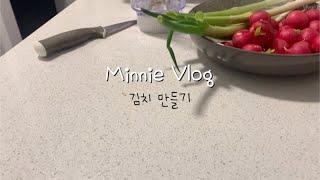 *Minnie Vlog 소소한 일상기록* 초간단 배추 …