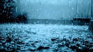 X Marks the Pedwalk - The House of Rain