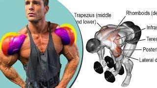 تمارين الكتف كمال الاجسام جدول تدريبي  ( shoulder exercises )