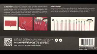 SHANY Cosmetics NY Collection Pro Brush Kit, 13 Ounce 22 Piece 2 Thumbnail