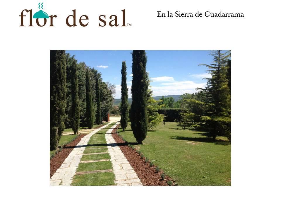 Flor De Sal Catering Youtube