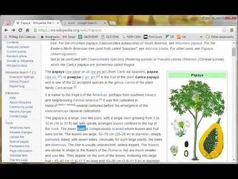 Chrome Tips: How to Search From Inside a Web Page