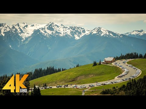 Beautiful Washington | 4K Scenic Nature Documentary Film about Washington State - Episode 4 in 4K