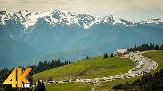 Beautiful Washington | 4K Scenic Nature Documentary Film about Washington State - Episode 4 in 4K