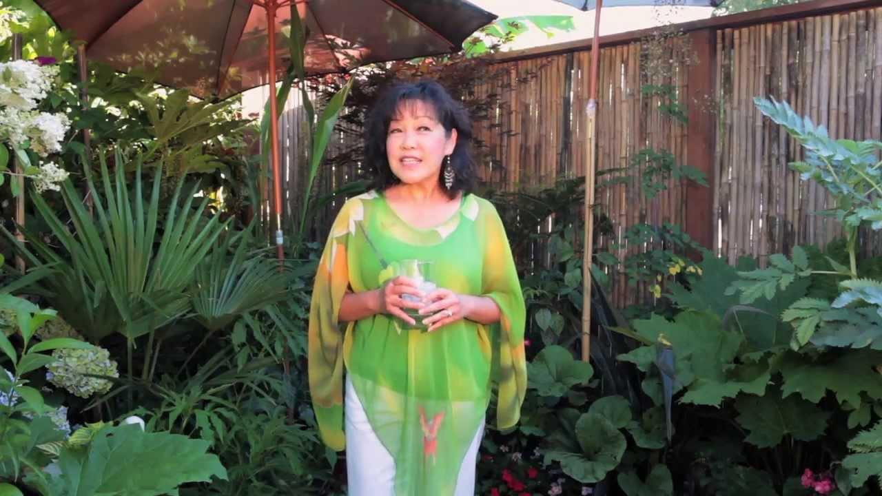 rob duanes portland tropical garden youtube - Tropical Garden 2016