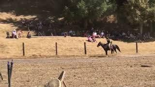 video Shrewsbury Renaissance Faire 2018