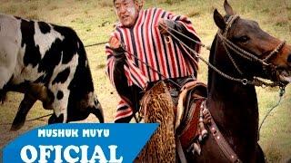 Gambar cover Rodeo de Toros - Cebadas 2016