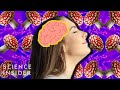 How Magic Mushrooms Affect Your Brain
